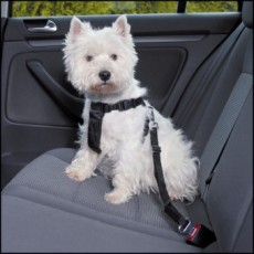 TRIXIE CAR SAFETY HARNESS (SML)