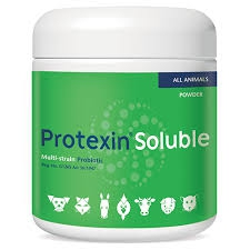 KYRON LABS PROTEXIN SOLUBLE PROBIOTIC 250G