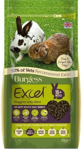 BURGESS EXCEL GUINEA PIG FOOD WITH MINT 2KG