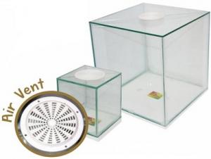 DARO SPIDER BOX GLASS 10X10X10CM